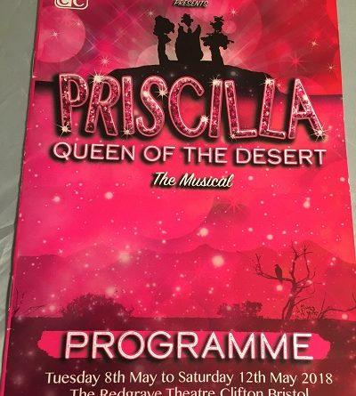 priscilla queen of the desert redgrave theatre