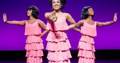 Diana Ross Motown The Musical