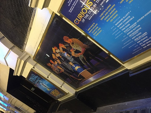 Curious incident London piccadilly theatre