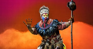 The Lion King Bristol Hippodrome Review